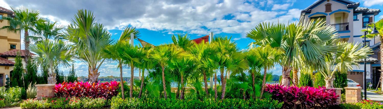 BLG Environmental Services - Professional Landscape Design for Orlando, Florida