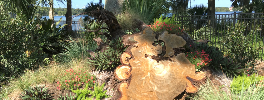 A Client In Winter Park Florida Was In Need Of Landscape Design And