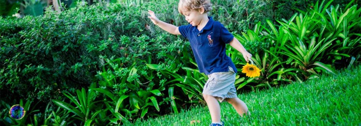 Why you should hire a professional landscaper designer in Orlando, Florida